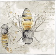 Queen Bee I Fine-Art Print