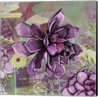 Adella Agave Garden Fine-Art Print