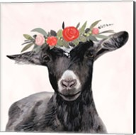 Garden Goat III Fine-Art Print