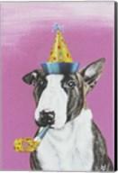 Party Dog II Fine-Art Print