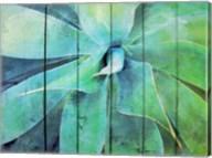 Creative succulent Fine-Art Print