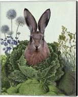 Cabbage Patch Rabbit 1 Fine-Art Print