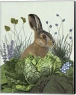 Cabbage Patch Rabbit 3 Fine-Art Print