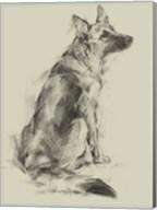 Puppy Dog Eyes V Fine-Art Print