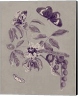 Nature Study in Plum & Taupe II Fine-Art Print