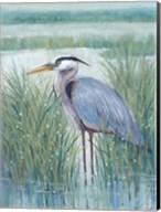 Wetland Heron II Fine-Art Print