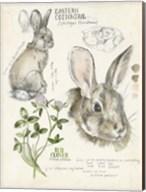 Wildlife Journals II Fine-Art Print