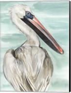 Turquoise Pelican I Fine-Art Print