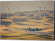 Farm & Field IV Fine-Art Print