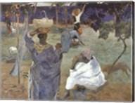 Martinique, 1887 Fine-Art Print