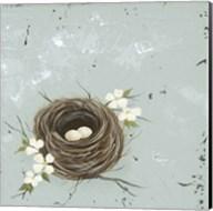 Flower Nest II Fine-Art Print