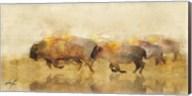 Traveling Bison II Fine-Art Print