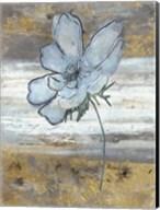 Anemone Fastlane Fine-Art Print
