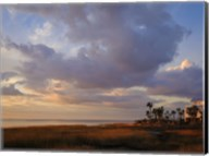Marsh View Fine-Art Print
