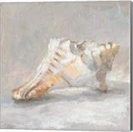 Impressionist Shell Study I Fine-Art Print