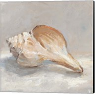 Impressionist Shell Study III Fine-Art Print
