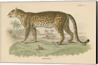 Vintage Leopard Fine-Art Print
