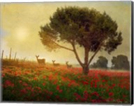 Trees Poppies Deer Fine-Art Print