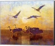 Sunrise Cranes Fine-Art Print