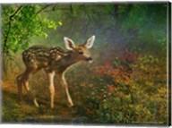 Forest Fawn Fine-Art Print