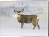 Bucky Deer Snow Fine-Art Print