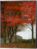 Maple Tree Walk Fine-Art Print