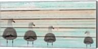 Seagulls Fine-Art Print