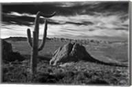 Saguaros Lost Dutchman State Park Arizona Superstition Mtns 2 Fine-Art Print