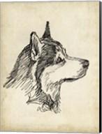 Breed Studies X Fine-Art Print