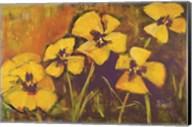 Yellow Pansies Fine-Art Print