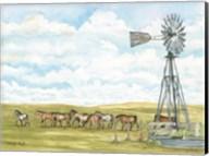 Pasture Horses Fine-Art Print