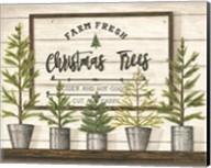 Farm Fresh Christmas Trees Fine-Art Print