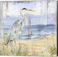 Birds of the Coast Rustic I Fine-Art Print