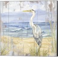 Birds of the Coast Rustic II Fine-Art Print