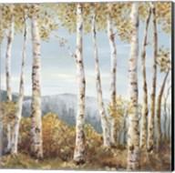 Up Hill Fine-Art Print