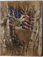 Whitetail Buck America Fine-Art Print