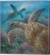 Sea Turtles - Turtle Bay Fine-Art Print