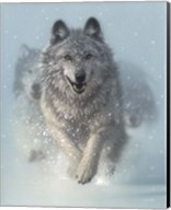 Running Wolves - Snow Plow Fine-Art Print