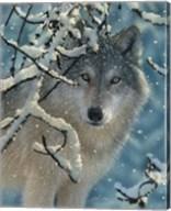 Wolf - Broken Silence Fine-Art Print