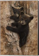 Curious Cubs Fine-Art Print