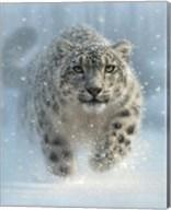 Snow Leopard - Snow Ghost - Vertical Fine-Art Print