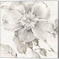 Indigold V Gray Fine-Art Print
