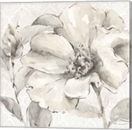 Indigold IV Gray Fine-Art Print