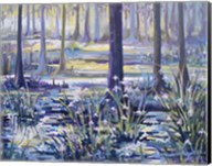 Blue Bayou Swamp Fine-Art Print