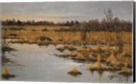 Muskrat Marsh Fine-Art Print