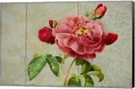 Pink Rose Painted on Wooden Panel Fine-Art Print