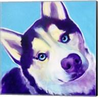 Husky - Dico Fine-Art Print