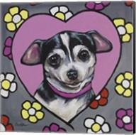 Chihuahua Coco Fine-Art Print