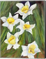 Daffodils with Nodding Heads Fine-Art Print