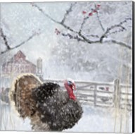 Christmas Turkey Fine-Art Print